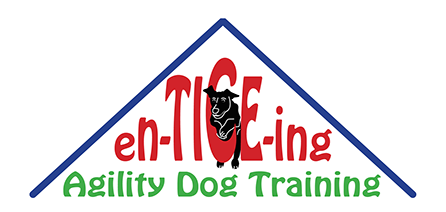 dog training, agility, agility training, dog agility training, enticeing agility, puppy training